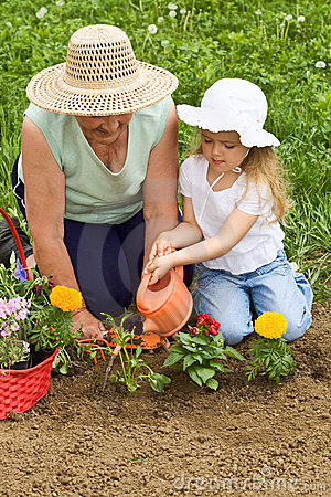 Grandmother Teaching Child Basics Gardening 14248216